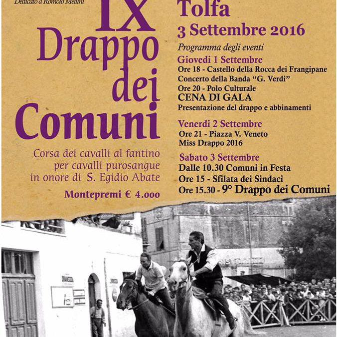 Drappo dei Comuni (Tolfa, 1-2-3 settembre 2016)