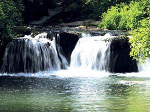 River Treja's park, Monte Gelato