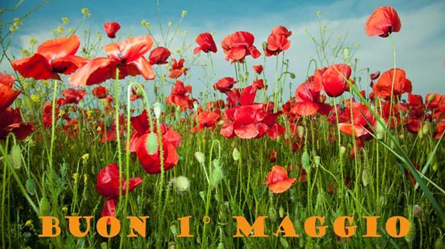 Fiori 1 Maggio.1 Maggio Fuori Roma 11 Scampagnate Intorno Al Lago Di Bracciano